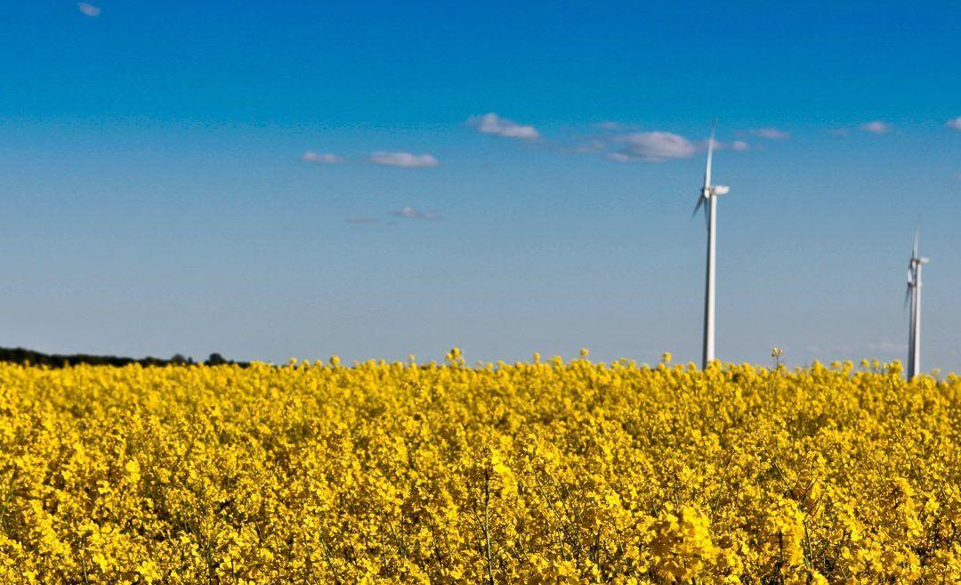 Geordneter Windenergie-Ausbau statt Wildwuchs